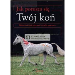 LITERATURA JEŹDZIECKA - JAK PORUSZA SIĘ TWÓJ KOŃ - Gillian Higggins i Stephanie Martin