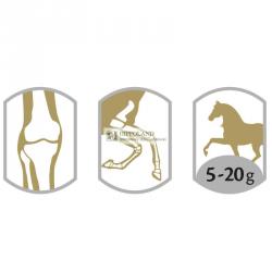 EQUISTRO FLEXADIN uc II - Preparat wspomagający stawy u koni - opakowanie 600g