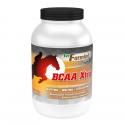 VETFARMLAB EQUINE BCAA XTRA EQUINE - opakowanie 1600 g