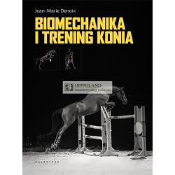 54dd7d28906d9 Sklep jeździecki HIPPOLAND · Dla konia · Dla jeźdźca · Do stajni ...