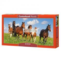 CASTORLAND C-400034 PASO FINO HERD • PUZZLE 4000 ELEMENTÓW