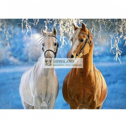CASTORLAND B-27378 THE WINTER HORSES • PUZZLE 260 ELEMENTÓW
