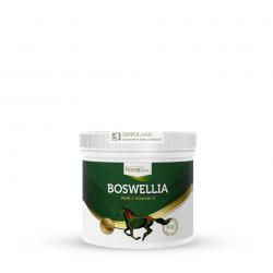 HORSELINEPRO BOSWELLIASERATTA - opakowanie 500 g