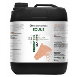 PROBIOTICS EQUUS - PROBIOTYK DLA KONI - 5 litrów